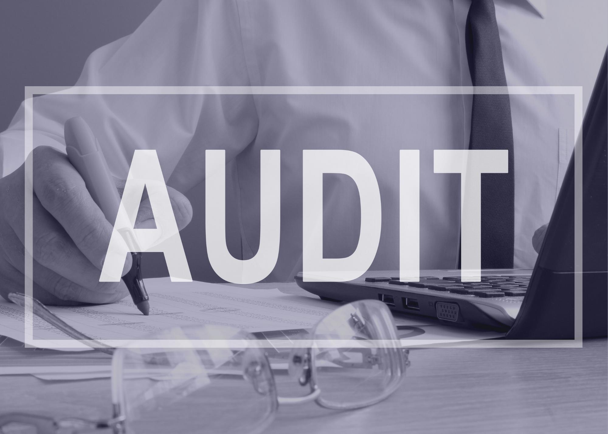 audit - text